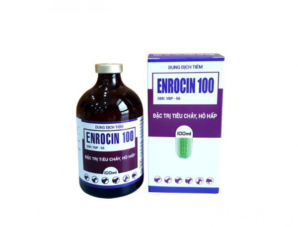 m_enrocin 100.JPG