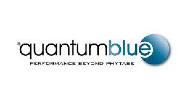 a_quantum blue.jpg